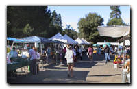 Click here for a short walk through The Placer County Farmer's Market