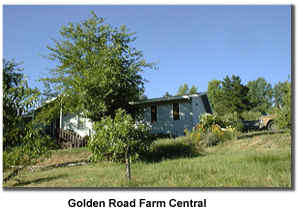 Golden Road Central, the farm house